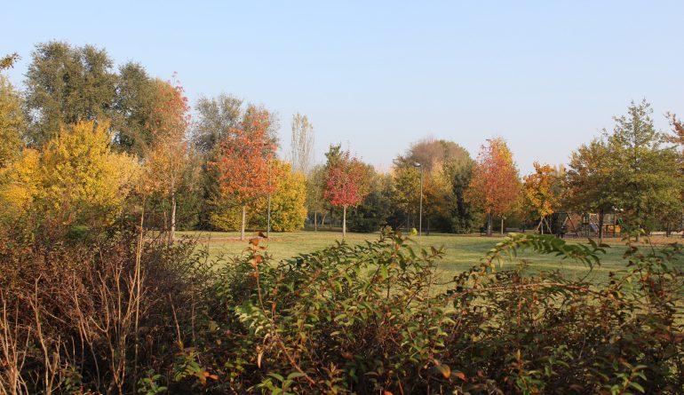 Suggestioni d'autunno